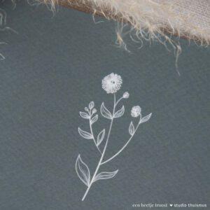 beetje-troost-sterkte-bloempje